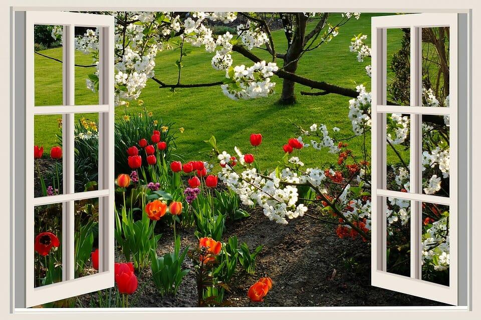 Window_to_Spring_Soil
